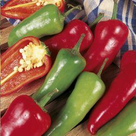 Pepper - Chilli - Jalapeno