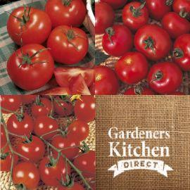 Tomato - tomato mix 2