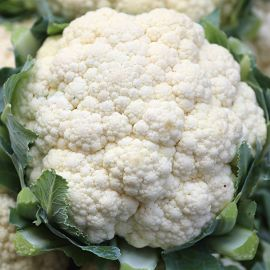 Cauliflower - All Year Round