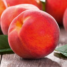 Fruit Me - Peach Me Red fruit tree